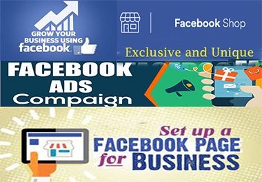 I will create and setup an impressive Facebook page or manage ad campaign or many more optimization