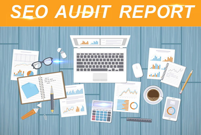 provide a professional SEO audit report and a competitive website analysis