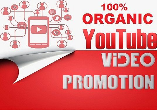 I will do an amazing YouTube promotion to your and boost sales