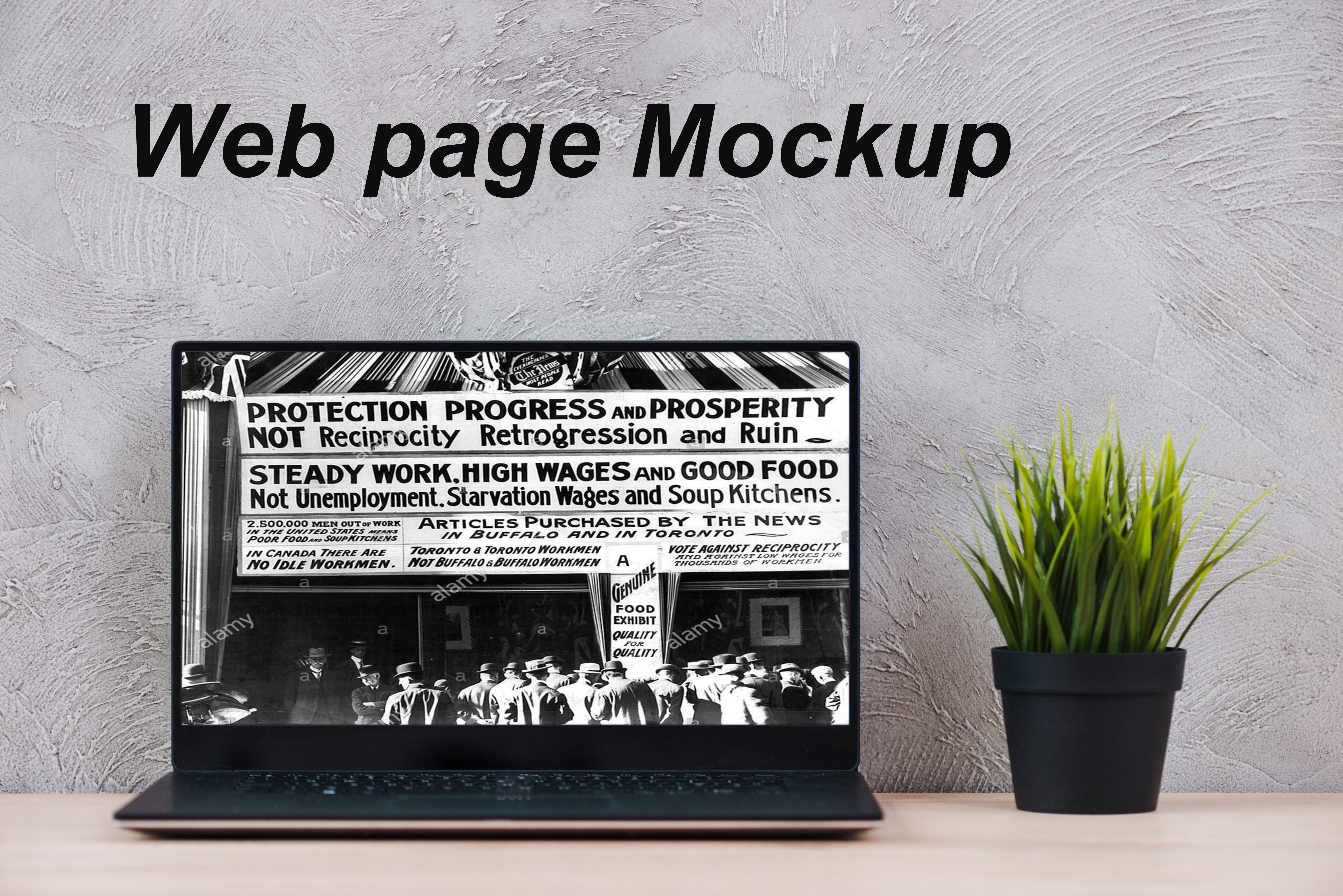 I will turn your webpage and Logo into 3D Mockup 5 images