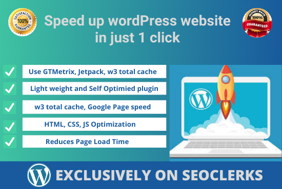 I will speed up and optimize your WordPress website.