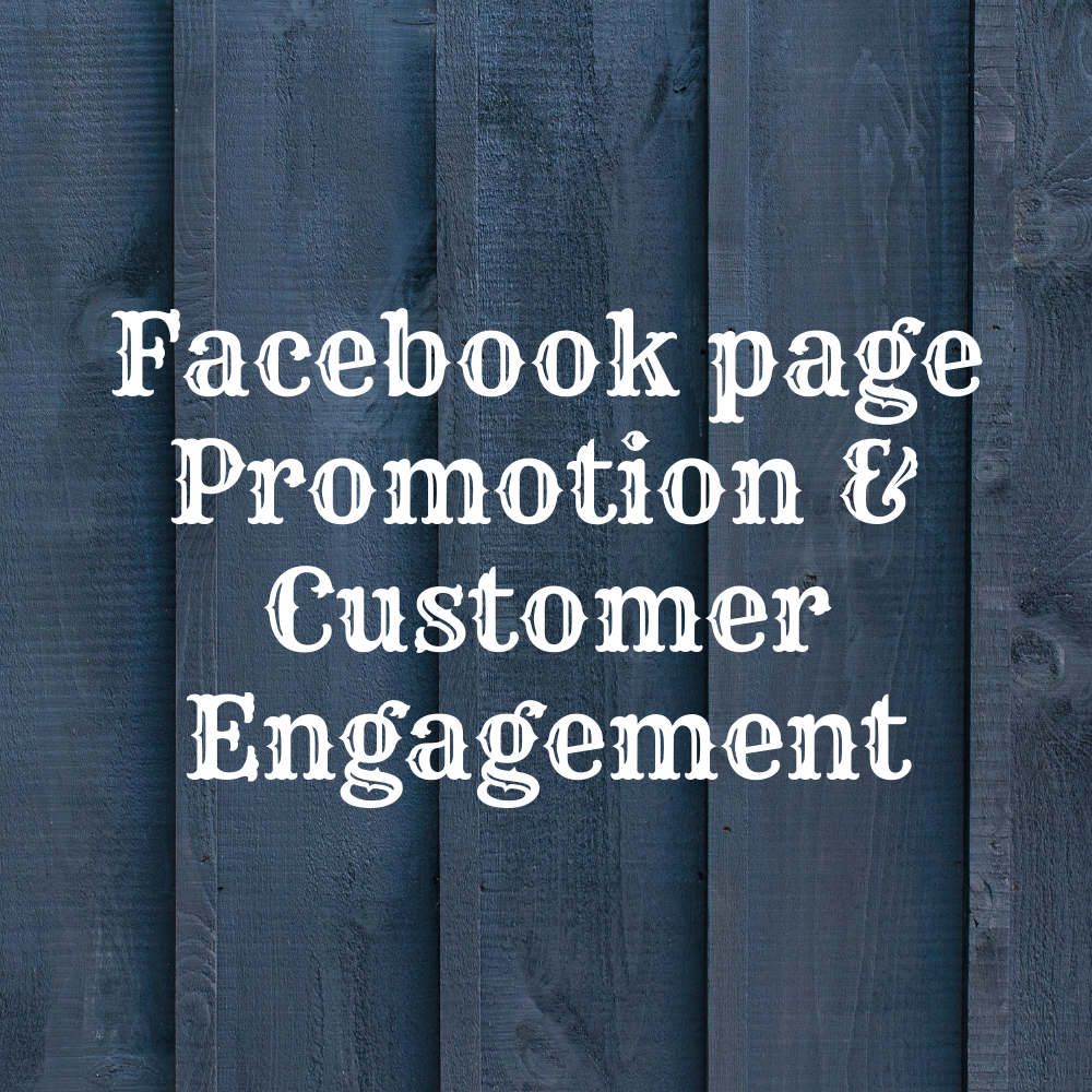 I Will Promote Your Facebook Page To Engage More Customers