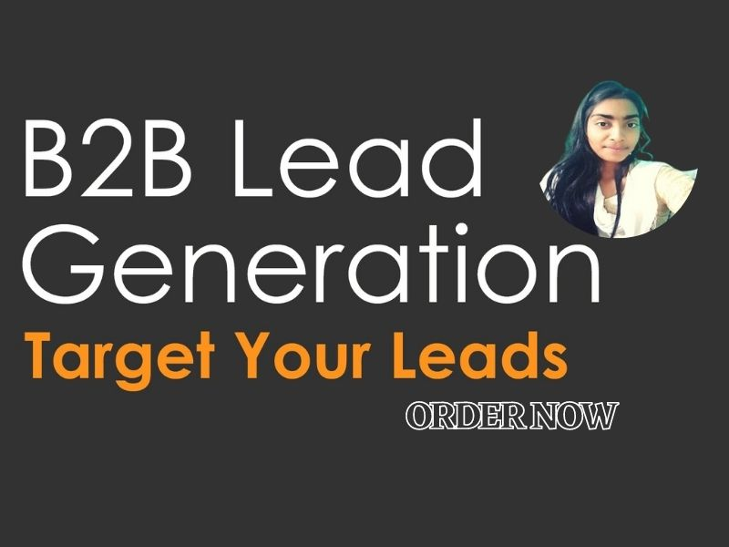I will do b2b lead generation for your Targeted Niche