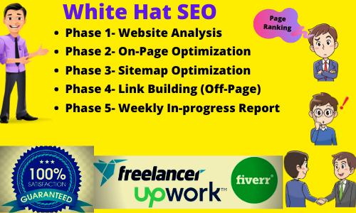 I will do best monthly SEO service for google top ranking in 30 days