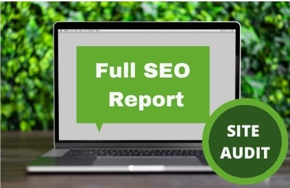 I will provide a detailed SEO audit of your site