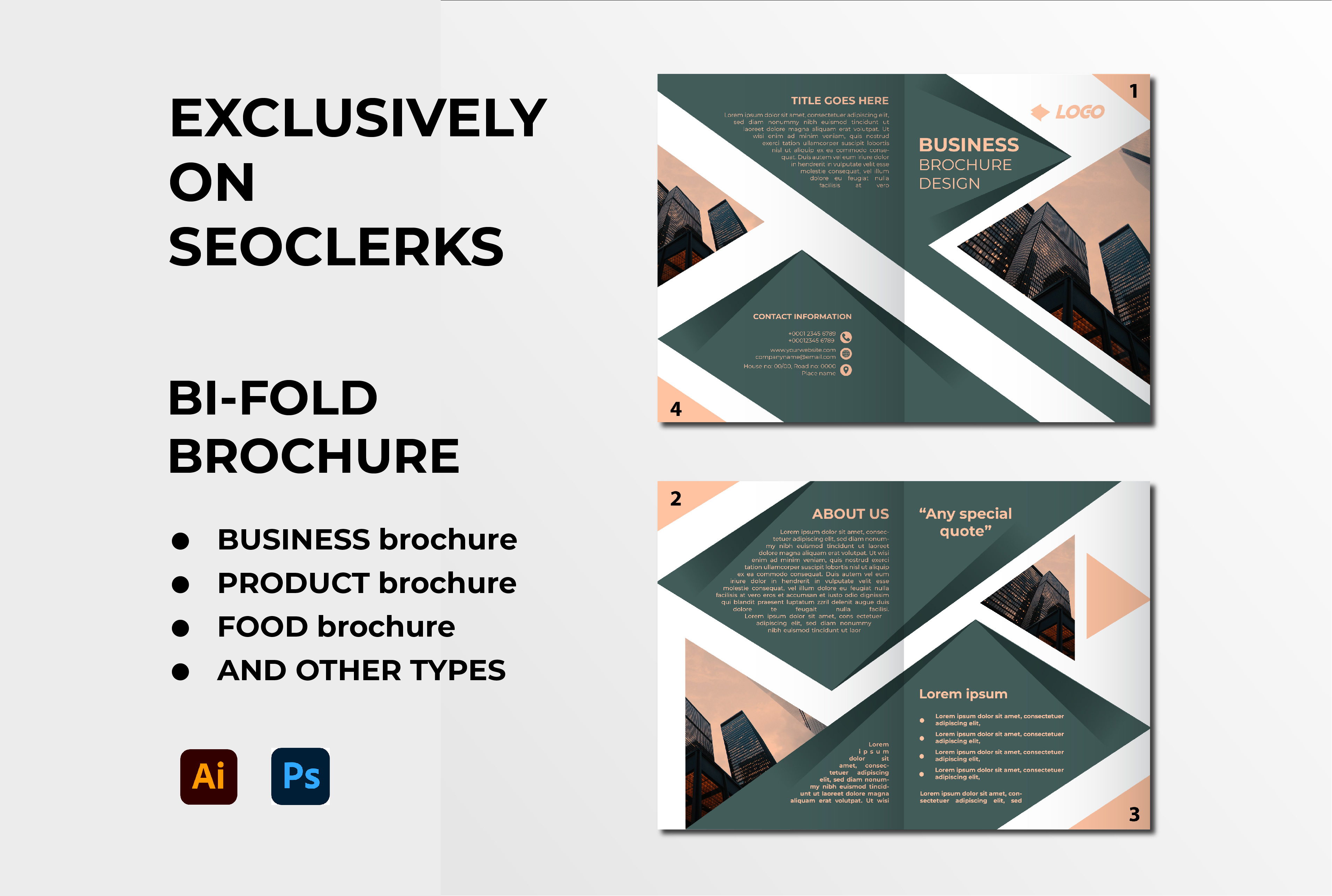 I will design bifold or trifold brochure template