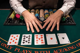 support backlink Casino/Poker/Gambling500 PBN Links Permanent Royal your website Value and 2nd tier