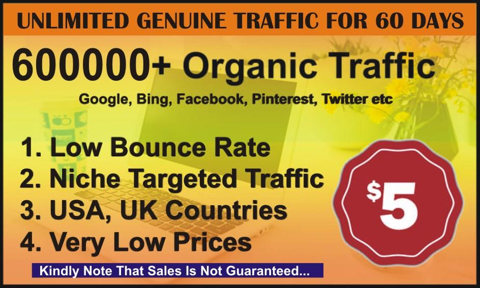 Blast Unlimited Organic Web Traffic for 60 Days