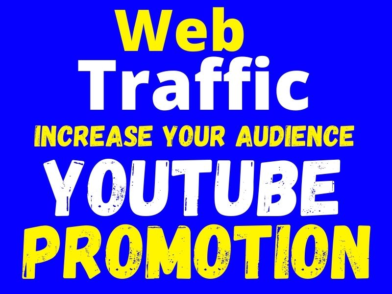 I will Drive Targeted organic web traffic and youtube marketing