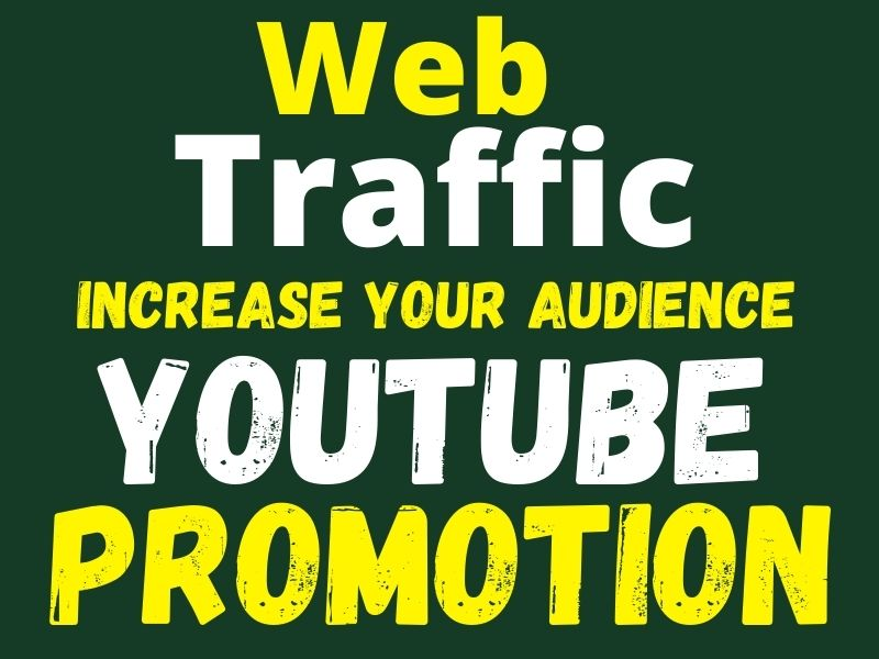 I will provide organic web traffic and youtube promotion