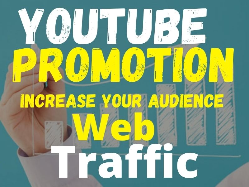 Drive your Targeted organic youtube promotion and web traffic
