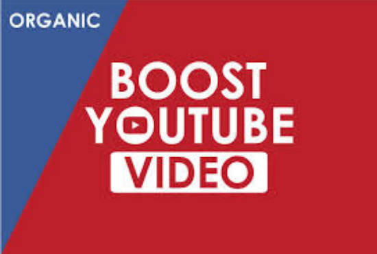 I will do organic youtube video promotion by google ads