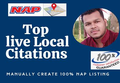 I will do 100 USA local citations for local business SEO