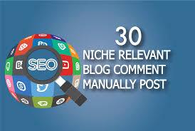 30 Niche Relevant Blog Comment Backlink seo