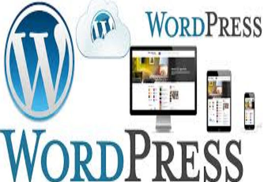 I will do WordPress website design and development and SEO for your business