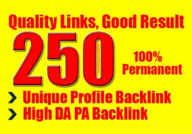 I will do 250 unique high domain authority SEO Profile Backlinks manually