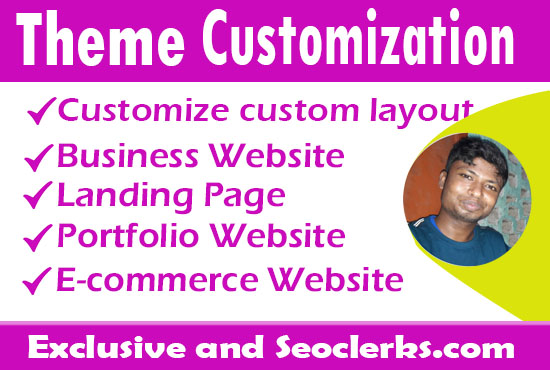 I will do Customize Your WordPress Website With Astra Theme Or Divi Theme
