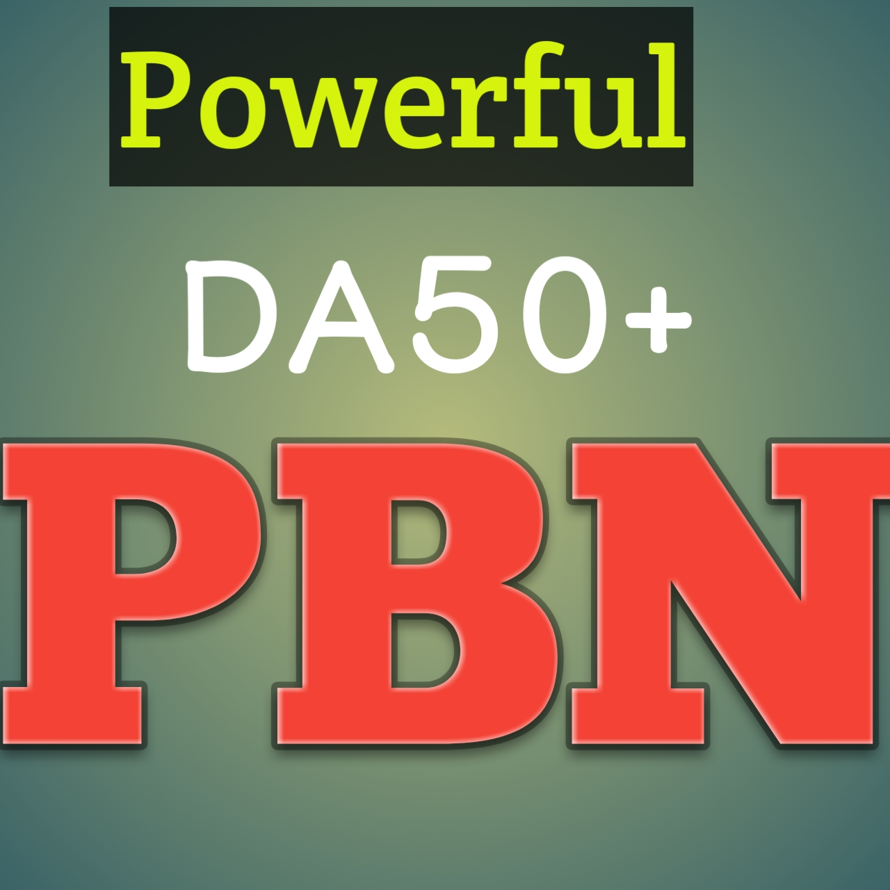 Build 240 Homepage PBN Back links High Quality DA 40 to 65+