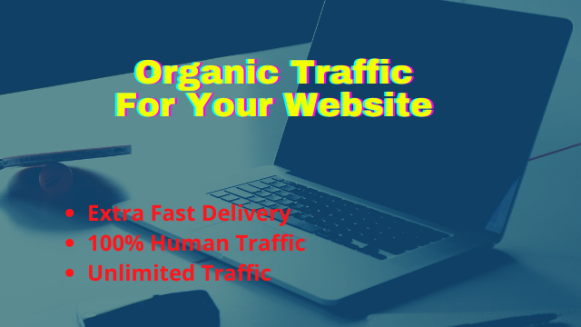 I will provide organic human traffic by using your keywords