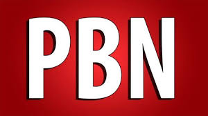 I will make 1000 high PBN backlinks for your ranking site