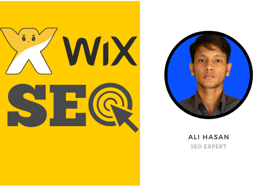 I will do complete SEO for WIX website