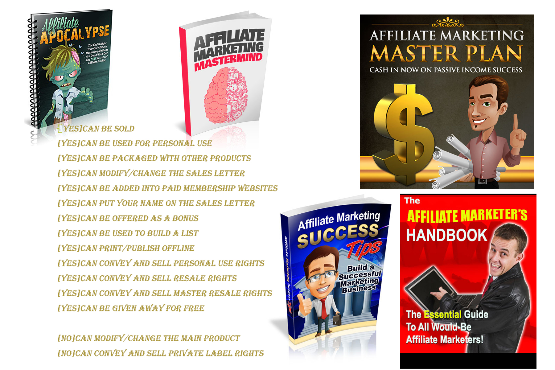 I Will give E-books with PLR License about Affiliate Marketing
