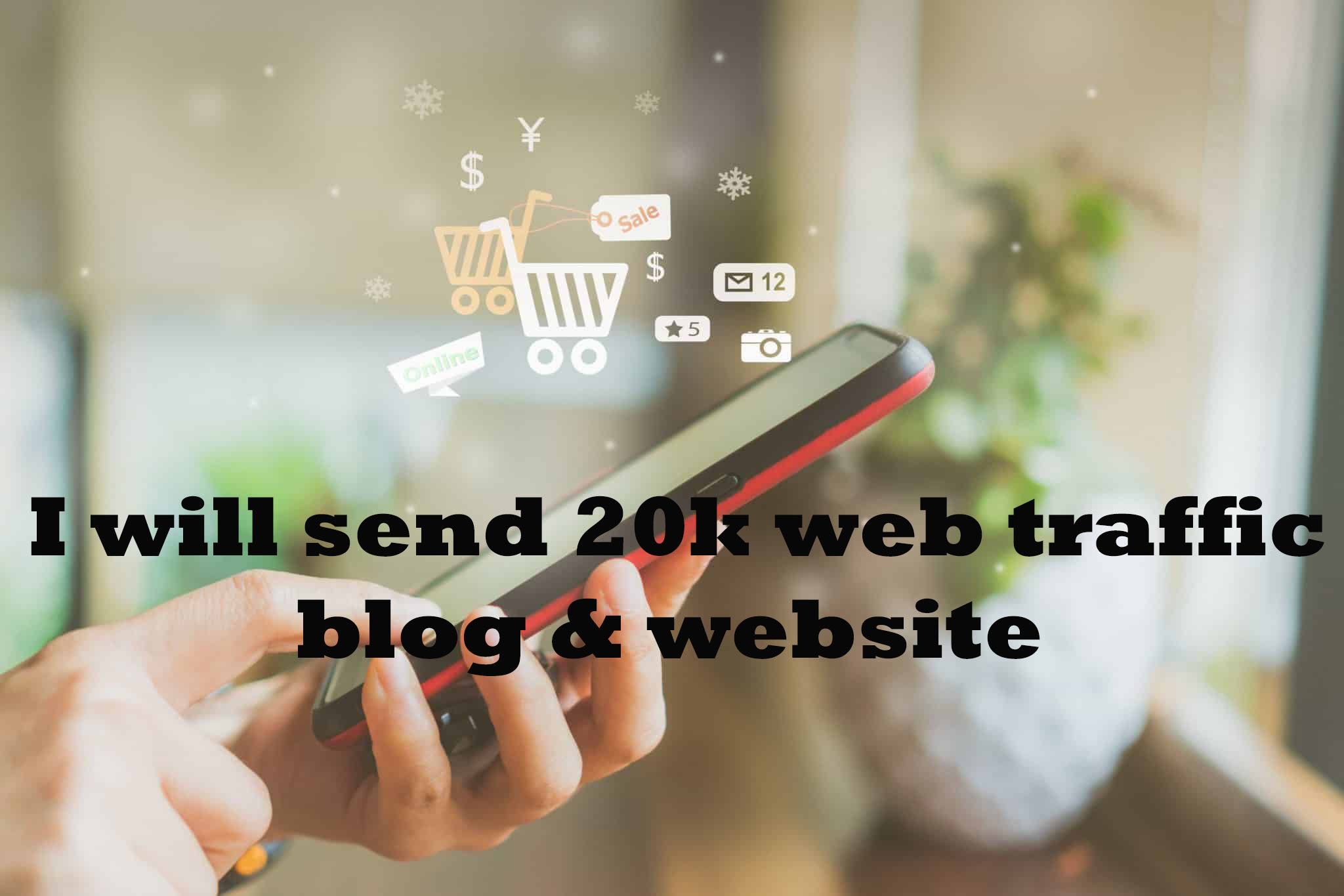 I will send 20,000 targeted USA web traffic to website or blog