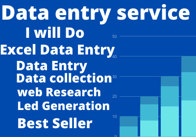 I Will be Perfect Data Entry Works For Your Business