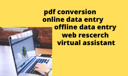 I will do data entry and work virtual assistant