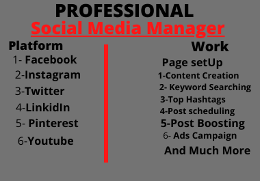 I Will be your professional social Media Marketing Manager expert