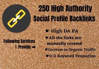 Create 250 High Authority Social Profile Backlinks