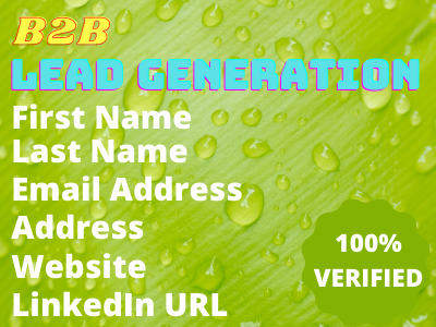 You Will get targeted b2b lead generation LinkedIn lead service 100 verified email