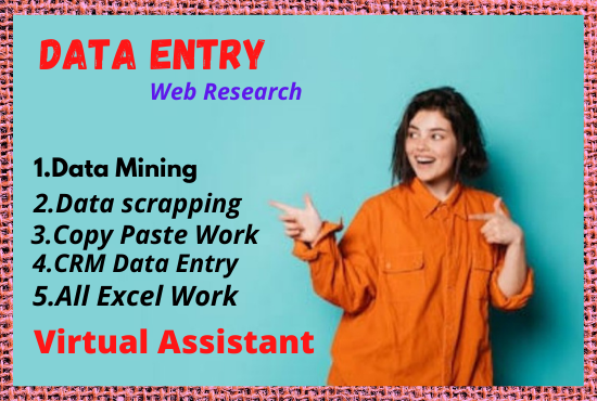 I will do data entry,  data collection and any type of excel works.
