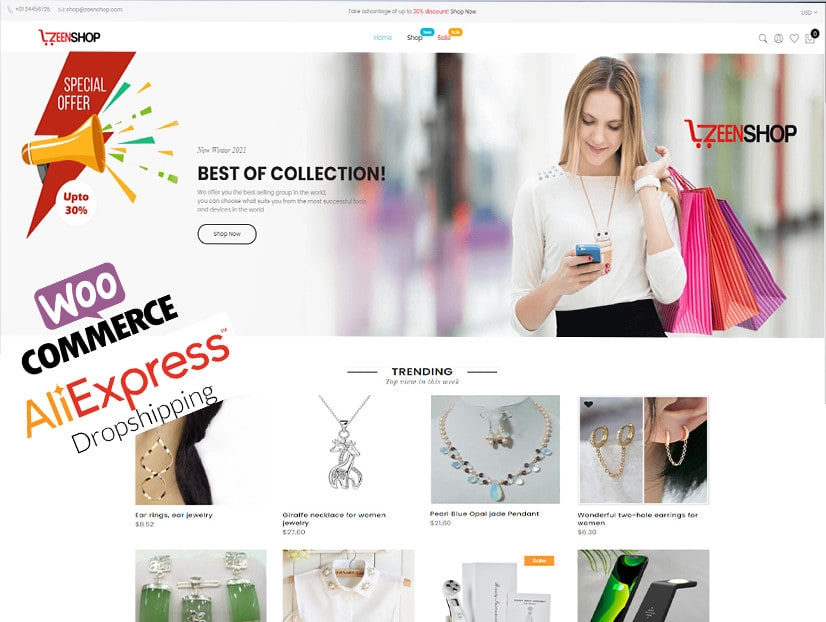 I will do wordpress woocommerce dropshipping store