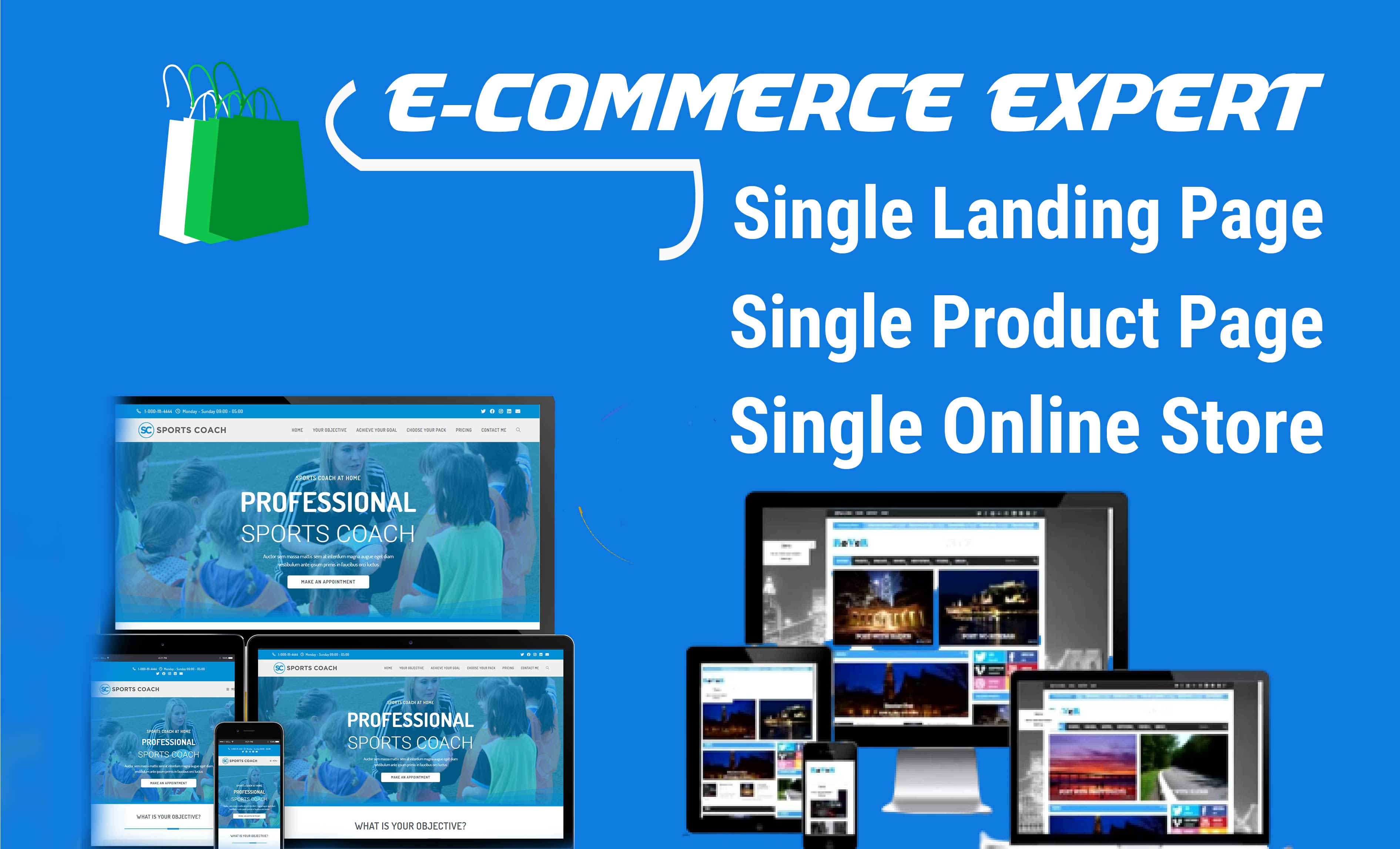 I will Build and develop Wordpress website,  squeeze page or landing page,  ecommerce store,  blog site