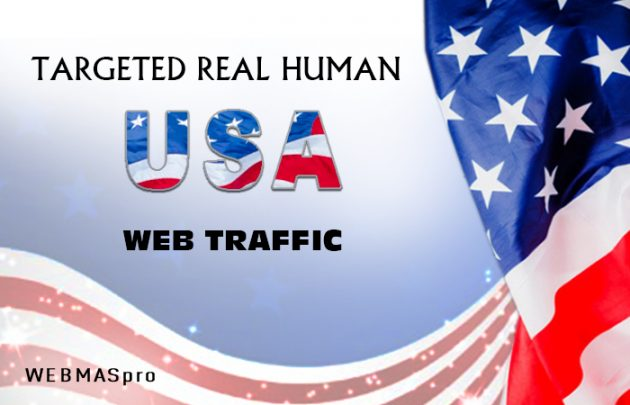 Real 1,000 USA Human traffic Search Google Analytics Rank your website Google 1st Page