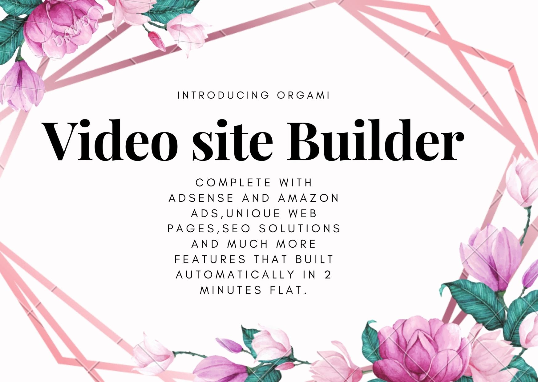 Intoducing Origami Video Site Builder. This software will help you to instantly create your own money