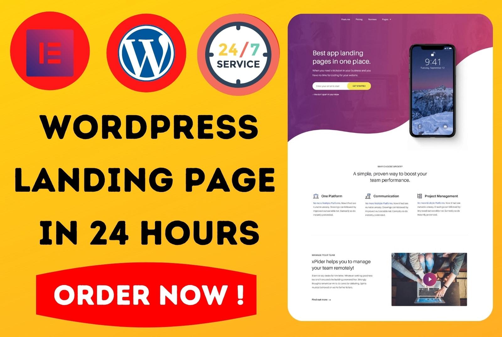 I will Design Wordpress Landing Page or Elementor Landing Page