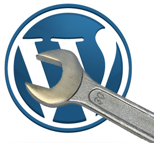 I will Solve any WordPress Problem