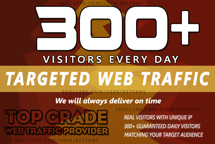 Send Unlimited Real Web Traffic To Your Website for 30 days