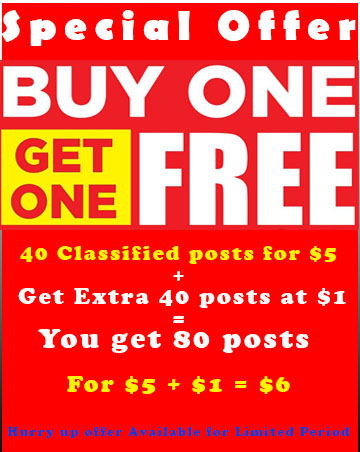 Buy1 Get 1 Free - Post 40 Times Your Product Ad on USA Classified Websites