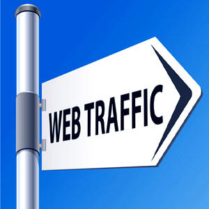unlimited human visitors/traffic to your website for 1 month adsense safe and get Good Alexa rank
