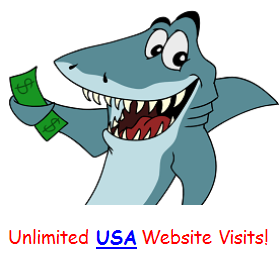 UNLIMITED Daily USA Visitors Traffic Campaign