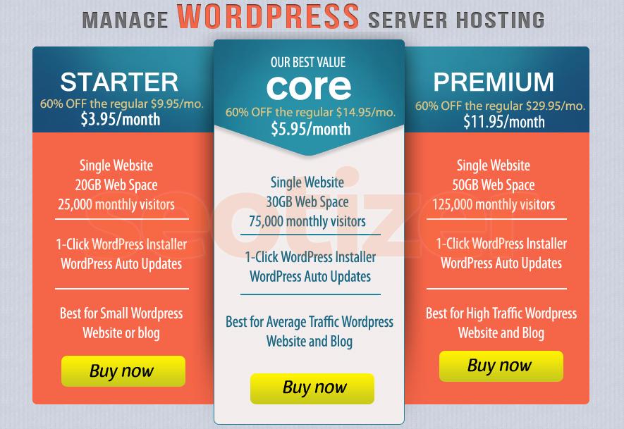 WordPress Server Hosting of 1 Year for Blog or Website