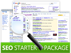 Get Excellent SEO Starter Package For Your Website