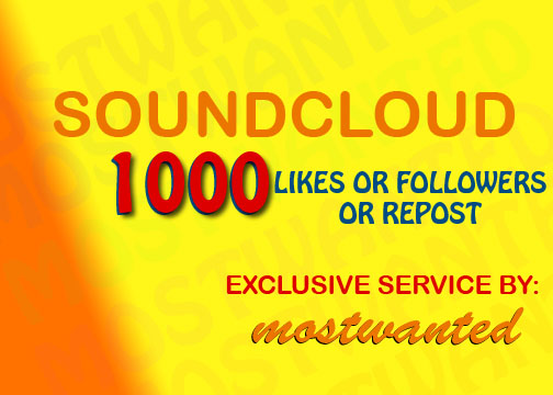 1000 SOUNDCLOUD LIKES OR 1000 SOUNDCLOUD FOLLOWERS WITHIN 24 HRS