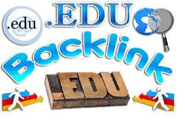 get you 10 premium manually built edu backlinks /.