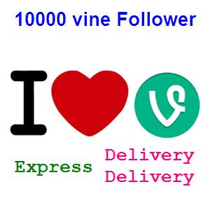 I will give you 10000 vine followers