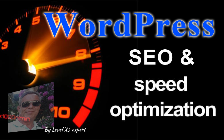 WordPress Speed Optimization And SEO Service By Exper...