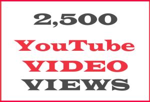 Give You 2500+ NON Drop Lifetime guarantee Views